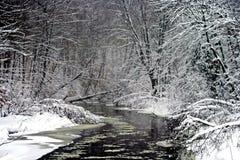 Río del enrollamiento en invierno foto de archivo libre de regalías