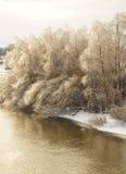 Río del invierno con los árboles en las baterías fotografía de archivo