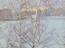 Río del invierno cubierto con hielo en la ciudad foto de archivo libre de regalías