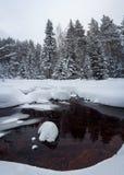 Río del invierno en el bosque Imagenes de archivo