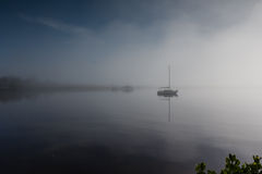 Río del Manatee de la niebla de la mañana fotografía de archivo libre de regalías