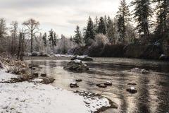 Río del norte de Santiam en invierno oregon fotografía de archivo