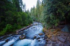 Río del norte Oregon de Umpqua fotos de archivo