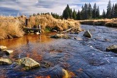 Río del otoño Foto de archivo libre de regalías
