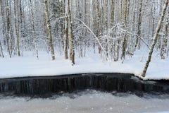 Río del río de los humedales en los bancos nevosos blancos de una mañana del invierno Foto de archivo libre de regalías