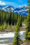Río del Ram que atraviesa las montañas rocosas Foto de archivo libre de regalías