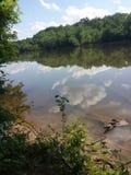 Río del siluro foto de archivo