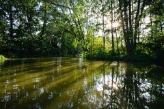 Río del verano Imágenes de archivo libres de regalías