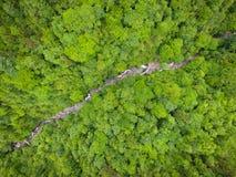 Río en árboles Fotografía de archivo libre de regalías