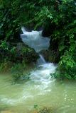 Río en bosque Fotografía de archivo libre de regalías