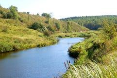 Río en bosque del abedul Fotos de archivo libres de regalías