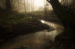 Río en bosque encantado del cuento de hadas Fotografía de archivo