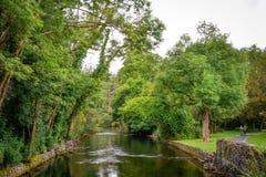 Río en Cong Abbey, condado Mayo, Irlanda Fotografía de archivo libre de regalías