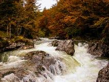 Río en el bosque con rapids. Otoño. Eslovenia. Fotografía de archivo