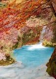 Río en el bosque del otoño Foto de archivo libre de regalías