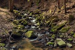 Río en el bosque - HDR Fotografía de archivo
