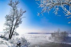 Río en el invierno todo en la nieve foto de archivo