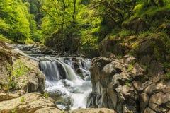 Río en el parque nacional de Hirkan en Lankaran Azerbaijan imagenes de archivo