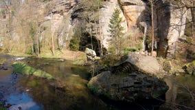Río en el parque nacional de Sajonia almacen de video
