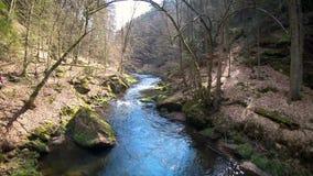 Río en el parque nacional de Sajonia metrajes