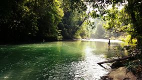 Río en el salvaje Imagenes de archivo