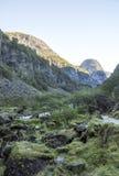 Río en el sur de Noruega Imagen de archivo libre de regalías