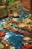Río en el valle de Marului Imagen de archivo libre de regalías