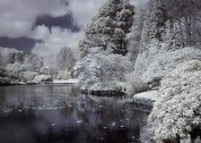 Río en infrarrojo foto de archivo