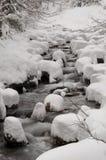 Río en invierno Foto de archivo