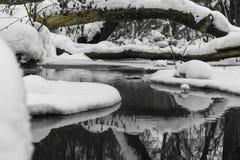 Río en invierno con fluir blanco de la nieve imagenes de archivo