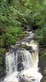 Río en Irlanda Imagenes de archivo