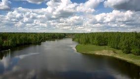 Río en los bosques densos verdes contra la conducción del tren de carga almacen de metraje de vídeo
