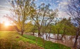 Río en luz de la mañana Fotos de archivo