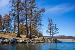 Río en Mongolia imagen de archivo libre de regalías