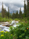 Río en montañas imagen de archivo