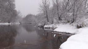 Río en nieve del invierno metrajes