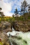 Río en Noruega Fotografía de archivo libre de regalías