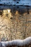 río en orillas verdes del verano con reflexiones del árbol en agua fotografía de archivo