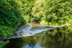 río en orillas verdes del verano con reflexiones del árbol en agua fotos de archivo