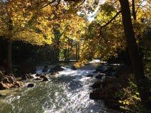 Río en otoño foto de archivo libre de regalías