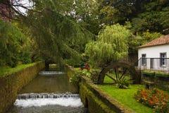 Río en parque en la ciudad de Furnas, San Miguel, Azores Fotografía de archivo