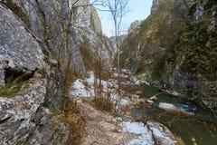 Río en paso de montaña Foto de archivo