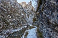 Río en paso de montaña Foto de archivo libre de regalías