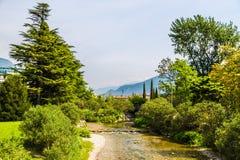 Río en primavera Foto de archivo libre de regalías