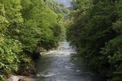 Río en primavera, Herculane, Rumania de Cerna Foto de archivo libre de regalías