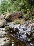 Río en un valle Imagen de archivo libre de regalías