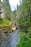 Río en una garganta rocosa Foto de archivo libre de regalías