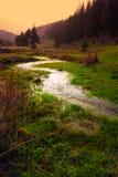 Río en valle Fotos de archivo