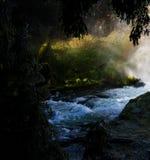 Río enmarcado por los árboles Imágenes de archivo libres de regalías