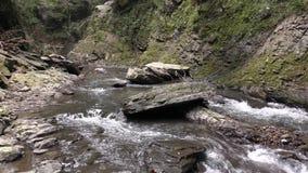 Río entre la roca áspera almacen de video